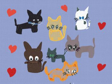 Kedi Istanbul Cats