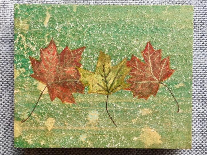 Momiji Autumn Leaves